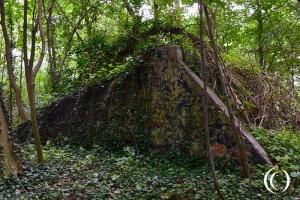 Fortress Hook of Holland: Artillery Stand Kormoran – Staelduinse Bos, s-Gravenzande, Netherlands