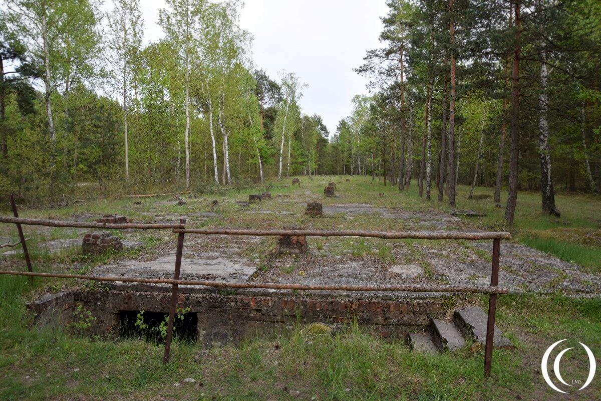 the great escape from stalag luft Stalag luft iii was een duits oorlogsgevangenenkamp gedurende de tweede wereldoorlog waar gevangengenomen  deze ontsnapping werd overschaduwd door the great escape.